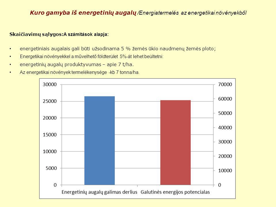 Kuro gamyba iš energetinių augalų /Energiatermelés az energetikai növényekből Skaičiavimų sąlygos: A számitások alapja: energetiniais augalais gali bū