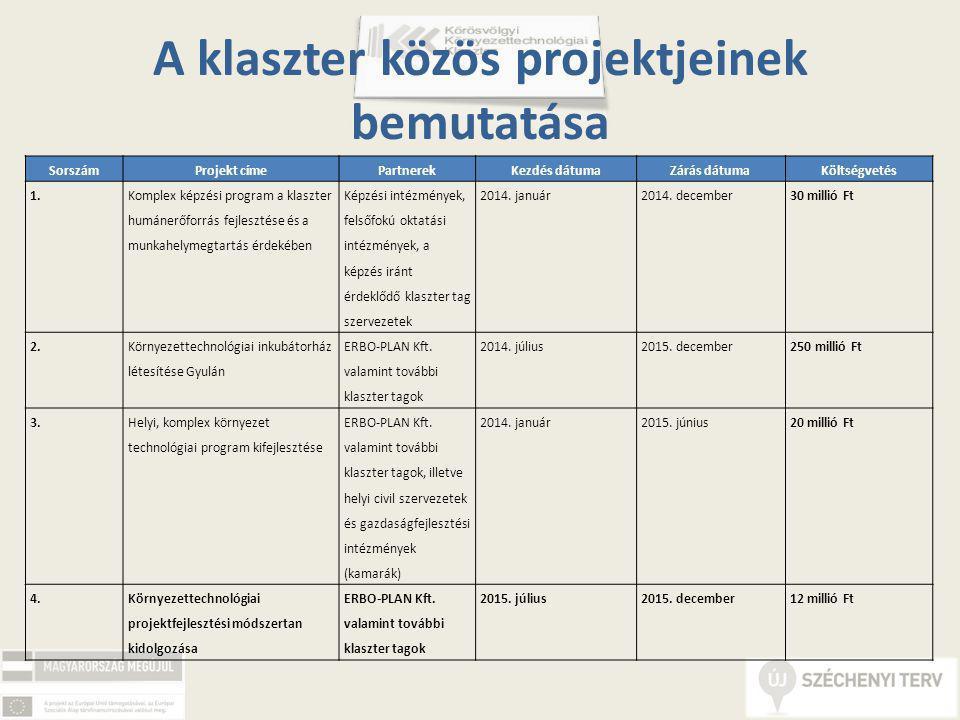 A klaszter közös projektjeinek bemutatása SorszámProjekt címePartnerekKezdés dátumaZárás dátumaKöltségvetés 1.