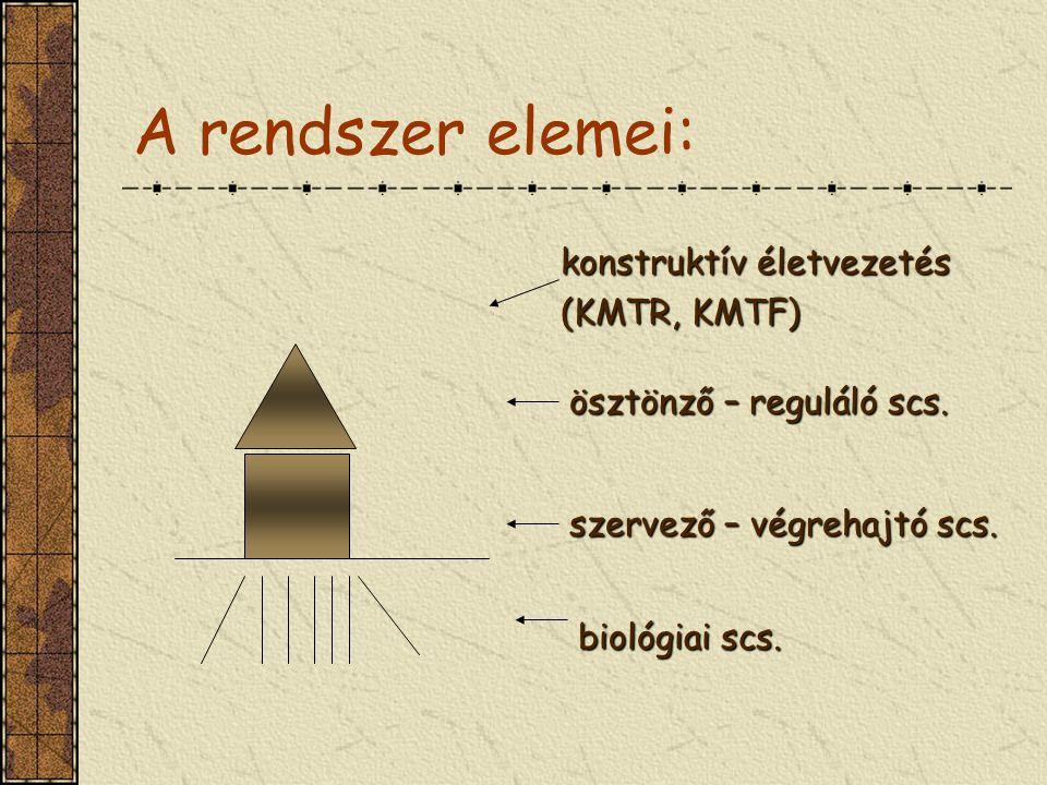 A rendszer elemei: konstruktív életvezetés (KMTR, KMTF) ösztönző – reguláló scs. biológiai scs. szervező – végrehajtó scs.