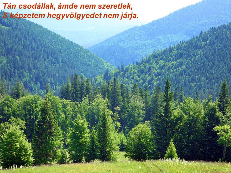 Tán csodállak, ámde nem szeretlek, S képzetem hegyvölgyedet nem járja.