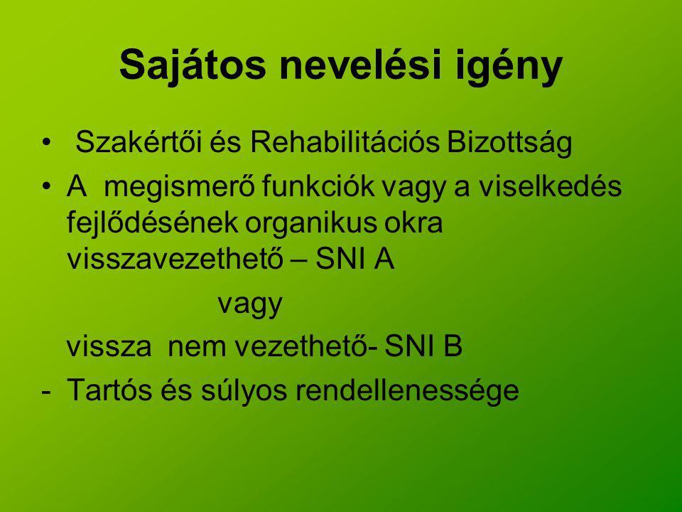 Sajátos nevelési igény Szakértői és Rehabilitációs Bizottság A megismerő funkciók vagy a viselkedés fejlődésének organikus okra visszavezethető – SNI