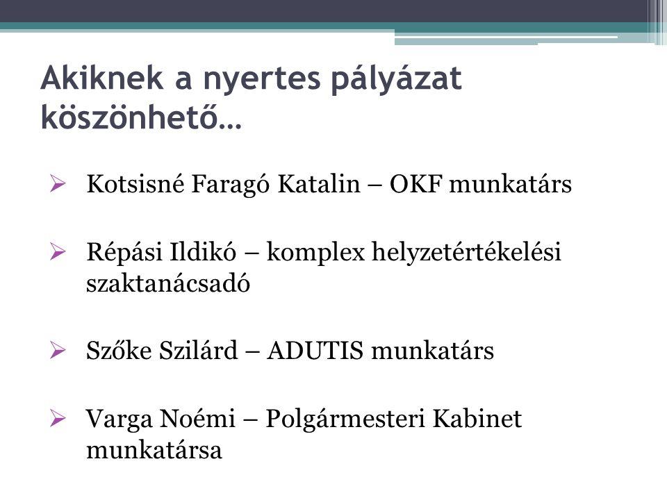 Támogatás Közép-Magyarországi régió 36 nyertes: 2 180 358 012 Ft támogatás Más régiók: 394 nyertes 18 860 159 163 Ft támogatás