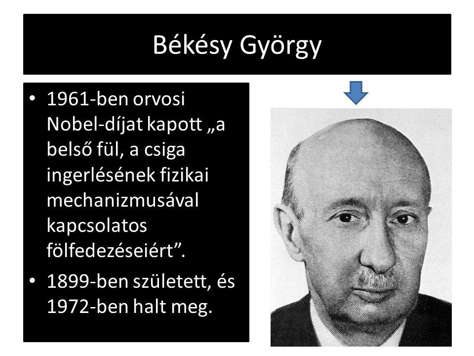"""Békésy György 1961-ben orvosi Nobel-díjat kapott """"a belső fül, a csiga ingerlésének fizikai mechanizmusával kapcsolatos fölfedezéseiért"""". 1899-ben szü"""
