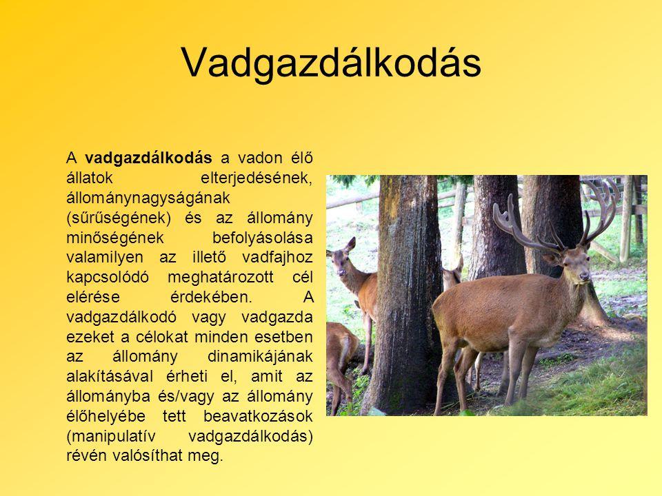 Vadgazdálkodás A vadgazdálkodás a vadon élő állatok elterjedésének, állománynagyságának (sűrűségének) és az állomány minőségének befolyásolása valamilyen az illető vadfajhoz kapcsolódó meghatározott cél elérése érdekében.