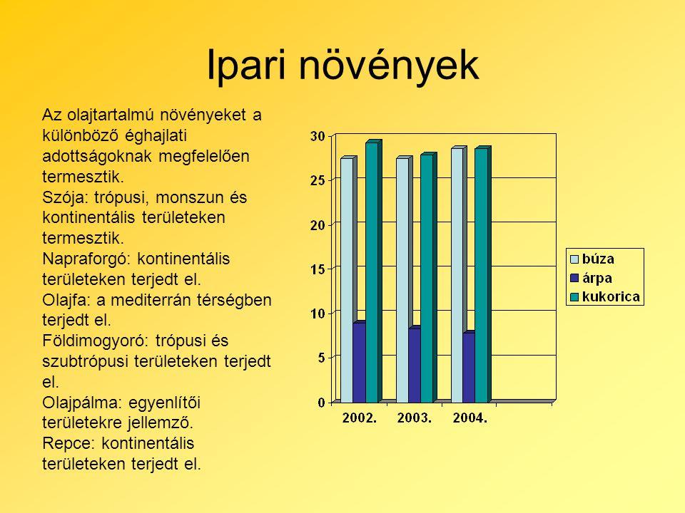 Ipari növények Az olajtartalmú növényeket a különböző éghajlati adottságoknak megfelelően termesztik.