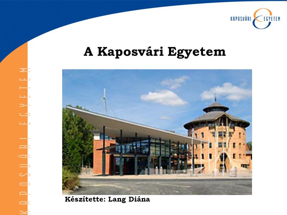  A magyar országgyűlés 2000.