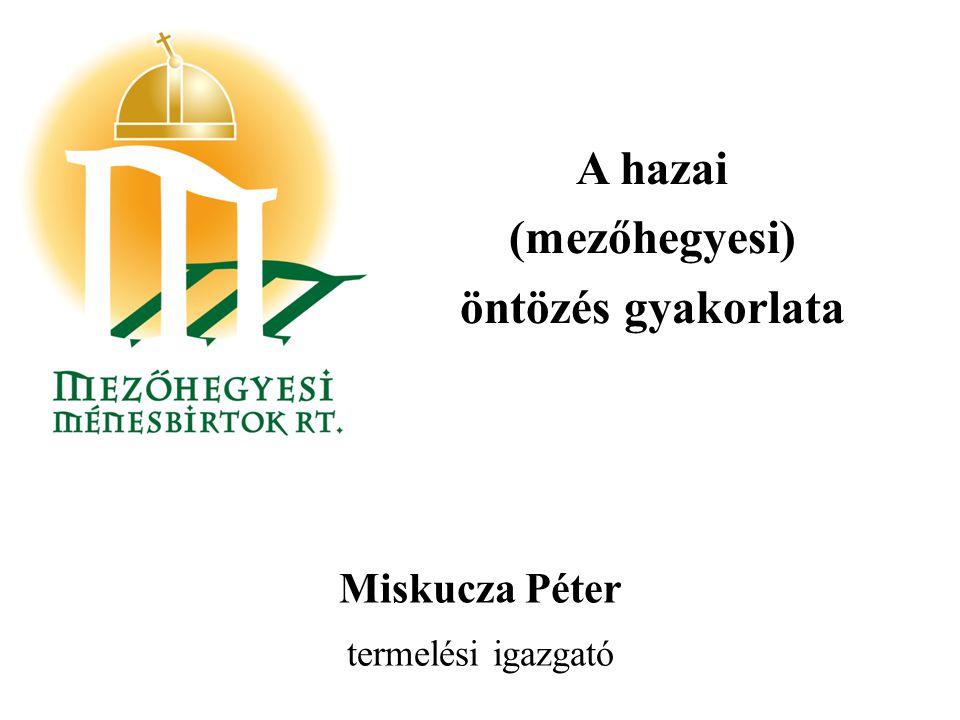 A hazai (mezőhegyesi) öntözés gyakorlata Miskucza Péter termelési igazgató