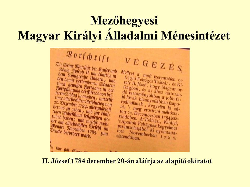 Mezőhegyesi Magyar Királyi Álladalmi Ménesintézet II. József 1784 december 20-án aláírja az alapító okiratot