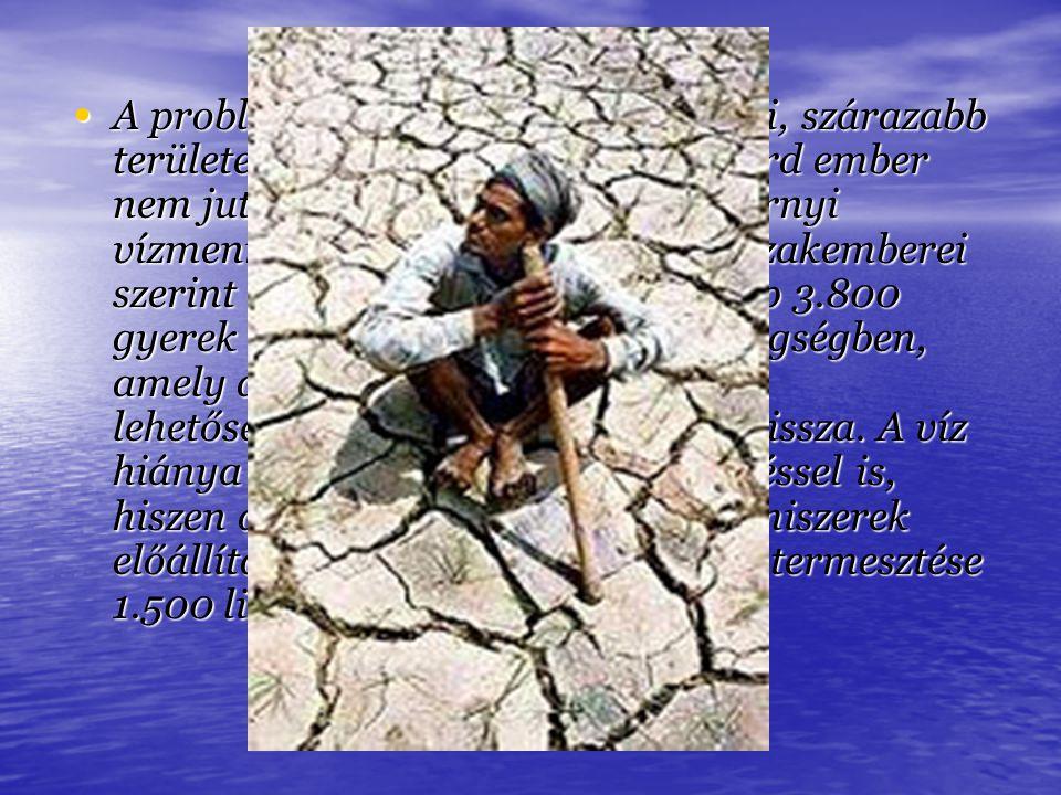 A probléma a világ tőlünk távolabbi, szárazabb területein a legsúlyosabb, 1,1 milliárd ember nem jut naponta ahhoz a 20-50 liternyi vízmennyiséghez, a
