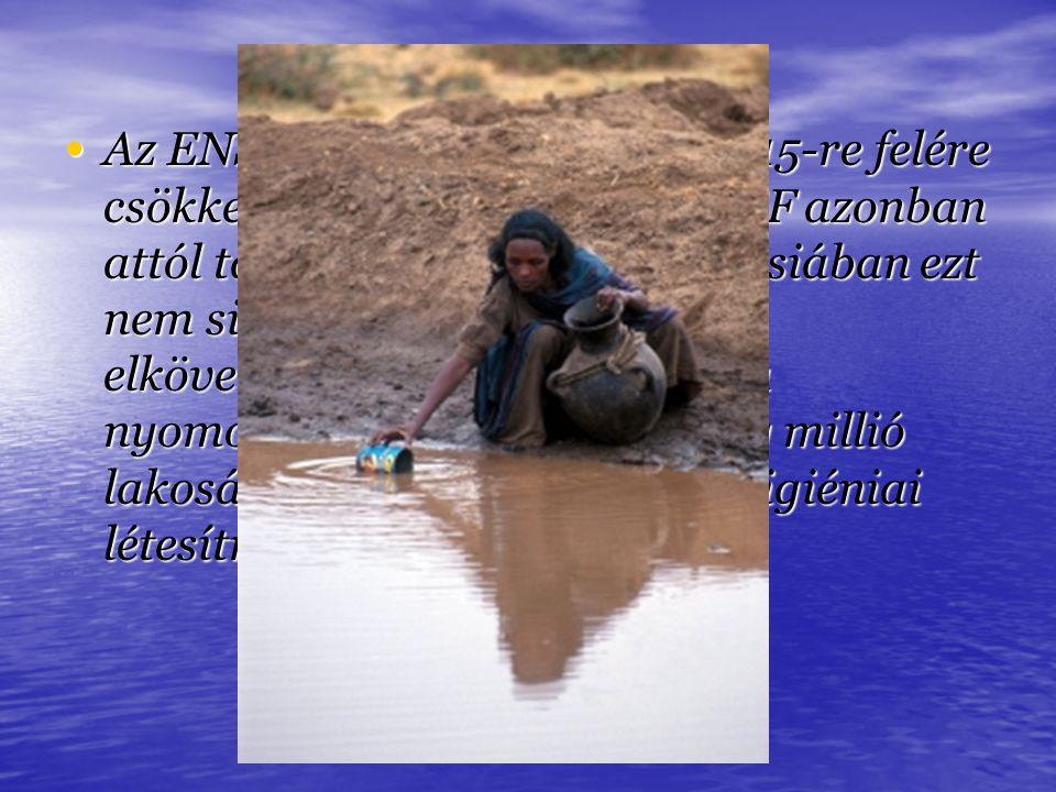 Az ENSZ célul tűzte ki, hogy 2015-re felére csökkenti a vízhiányt. A UNICEF azonban attól tart, hogy Afrikában és Ázsiában ezt nem sikerül majd elérni