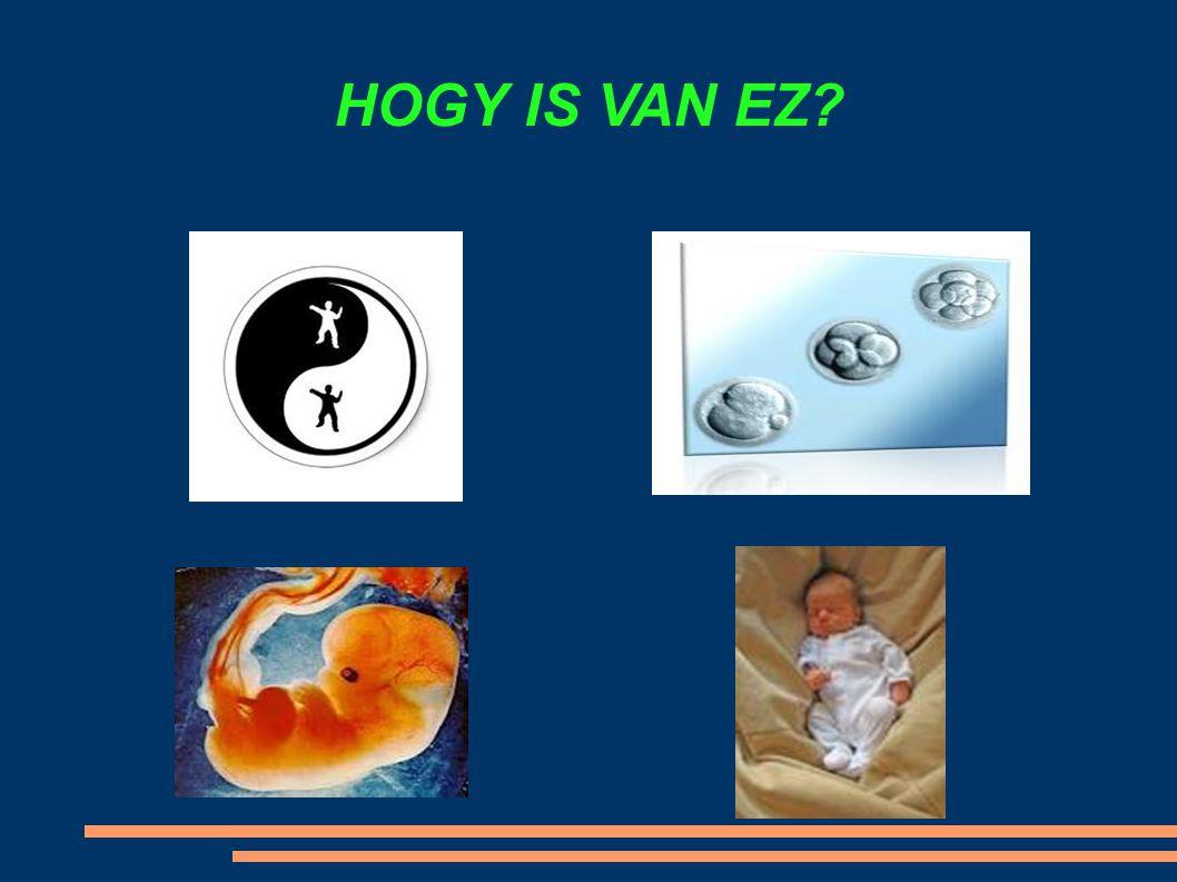 HOGY IS VAN EZ