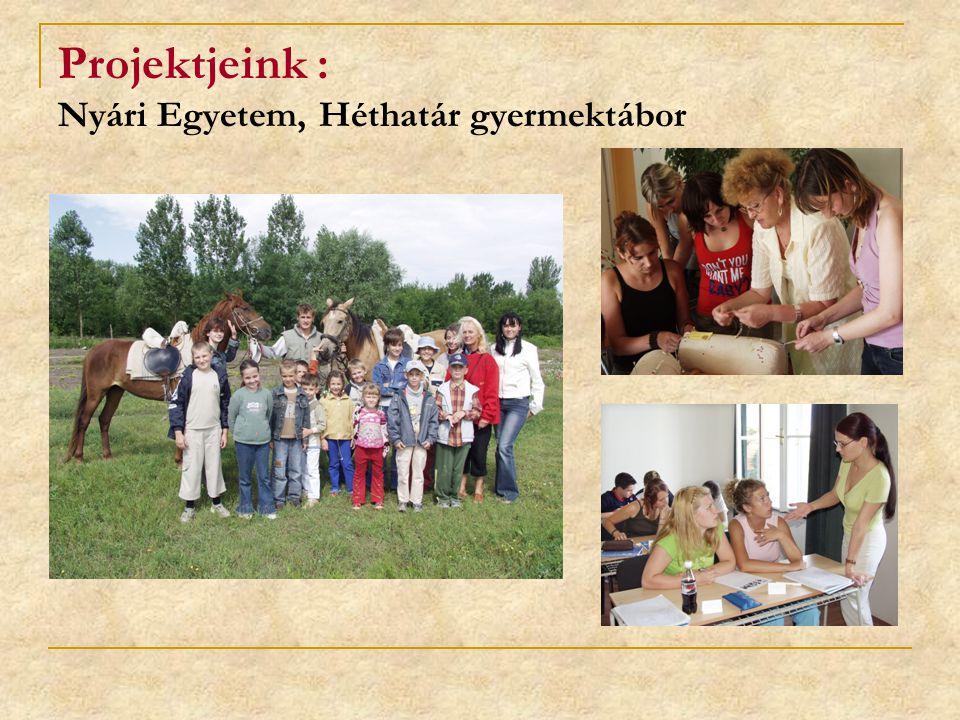 Tevékenység: felnőttképzés terén Felnőttek, gyerekek, szeniorok képzése, munkaerőpiac igényeire való tekintettel Képzési programok kidolgozása és megvalósítása ( akkreditált rövidtávú átképzések, továbbképzések) Hazai és nemzetközi együttműködésekbe való bekapcsolódás