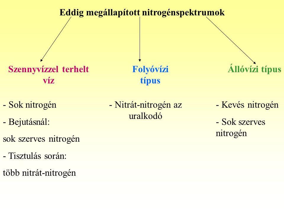 Eddig megállapított nitrogénspektrumok Szennyvízzel terhelt víz Folyóvízi típus Állóvízi típus - Sok nitrogén - Bejutásnál: sok szerves nitrogén - Tisztulás során: több nitrát-nitrogén - Nitrát-nitrogén az uralkodó - Kevés nitrogén - Sok szerves nitrogén