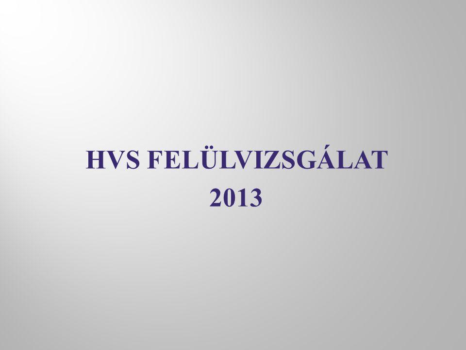 HVS FELÜLVIZSGÁLAT 2013
