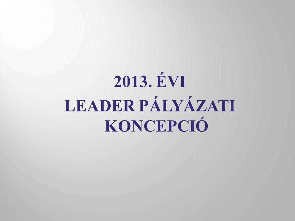 2013. ÉVI LEADER PÁLYÁZATI KONCEPCIÓ