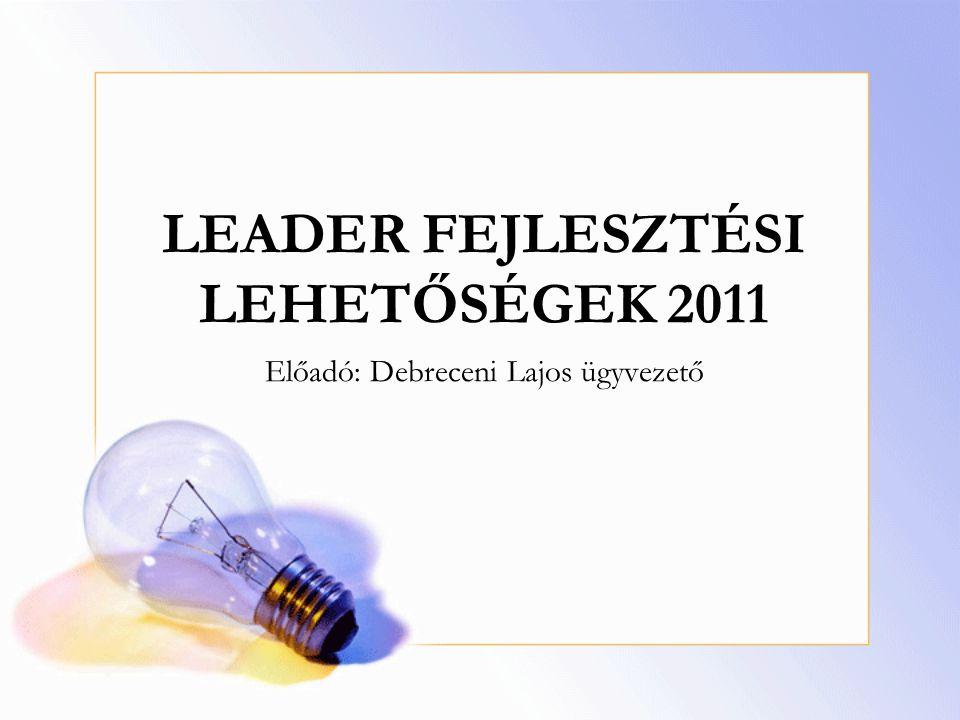 LEADER FEJLESZTÉSI LEHETŐSÉGEK 2011 Előadó: Debreceni Lajos ügyvezető