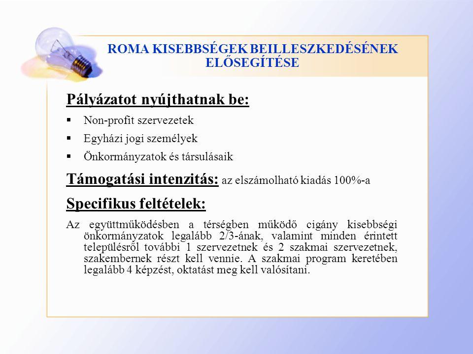 ROMA KISEBBSÉGEK BEILLESZKEDÉSÉNEK ELŐSEGÍTÉSE Pályázatot nyújthatnak be:  Non-profit szervezetek  Egyházi jogi személyek  Önkormányzatok és társulásaik Támogatási intenzitás: az elszámolható kiadás 100%-a Specifikus feltételek: Az együttműködésben a térségben működő cigány kisebbségi önkormányzatok legalább 2/3-ának, valamint minden érintett településről további 1 szervezetnek és 2 szakmai szervezetnek, szakembernek részt kell vennie.