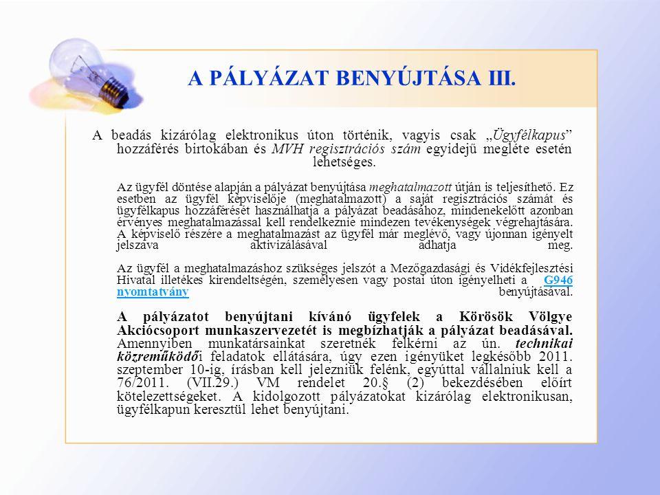 A PÁLYÁZAT BENYÚJTÁSA III.