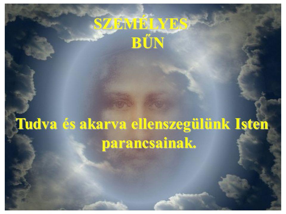 Az első ember Isten akaratából az egész emberiséget képviselte. A paradicsomi állapot annak kifejezése, hogy ott az ember nem csupán a tiszta természe