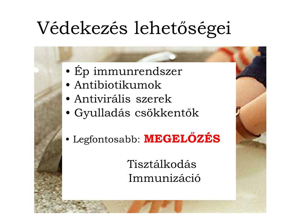Védekezés lehetőségei Ép immunrendszer Antibiotikumok Antivirális szerek Gyulladás csökkentők Legfontosabb: MEGELŐZÉS Tisztálkodás Immunizáció