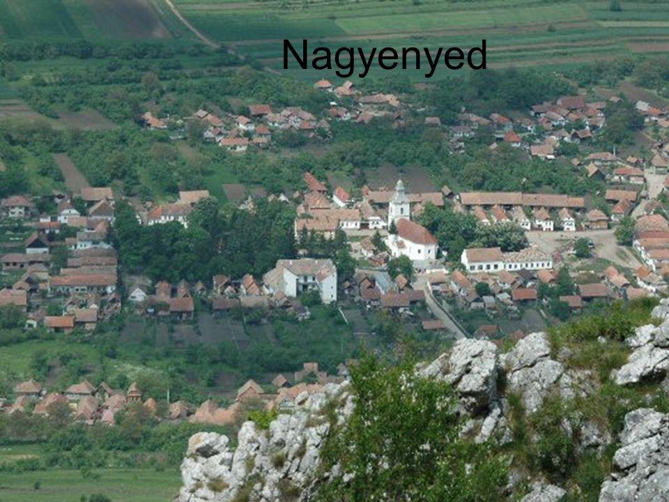 Kisebb információk Közigazgatás Ország Románia Történelmi régióErdély MegyeFehér Rangmegyei jogú város PolgármesterMihai Horaiu Josan Népesség Népesség22 028 fő (2002) +/- Község népessége 28 934 (2002) Magyar lakosság3549 Népsűrűség203 fő/km² Földrajzi adatok Terület142,2 km² Nagyenyed címere: