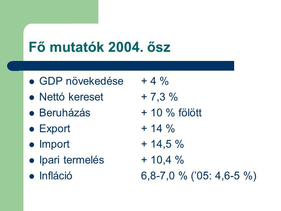 Fő mutatók 2004.