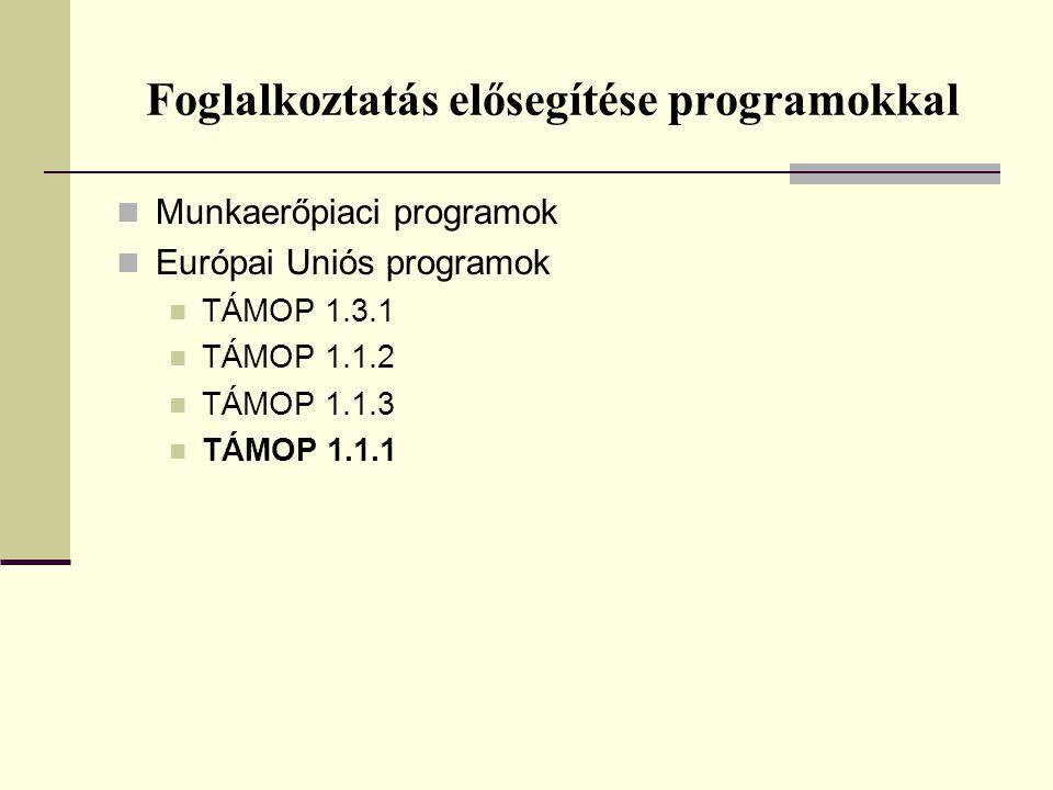 Foglalkoztatás elősegítése programokkal Munkaerőpiaci programok Európai Uniós programok TÁMOP 1.3.1 TÁMOP 1.1.2 TÁMOP 1.1.3 TÁMOP 1.1.1