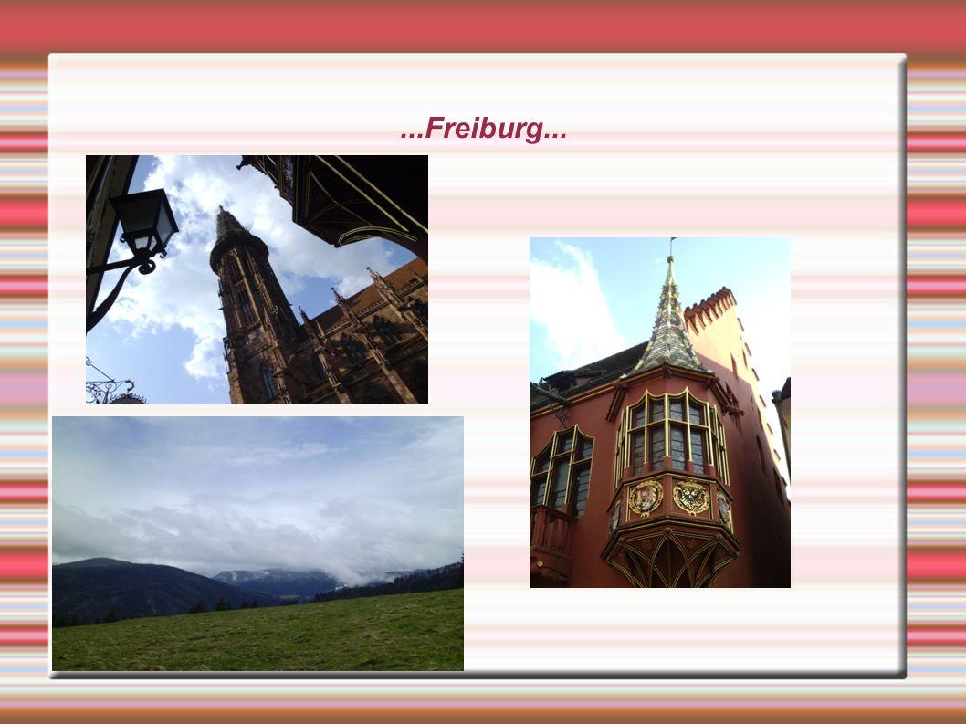 ...Freiburg...