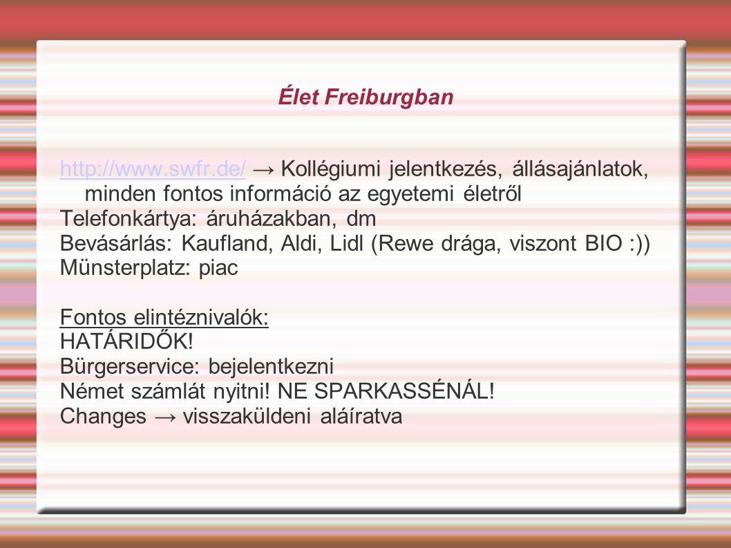 Élet Freiburgban http://www.swfr.de/http://www.swfr.de/ → Kollégiumi jelentkezés, állásajánlatok, minden fontos információ az egyetemi életről Telefonkártya: áruházakban, dm Bevásárlás: Kaufland, Aldi, Lidl (Rewe drága, viszont BIO :)) Münsterplatz: piac Fontos elintéznivalók: HATÁRIDŐK.