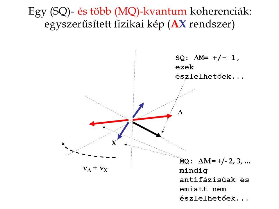 Egy (SQ)- és több (MQ)-kvantum koherenciák: egyszerűsített fizikai kép ( AX rendszer) A X A + X MQ:  M= +/- 2, 3,... mindig antifázisúak és emiatt ne