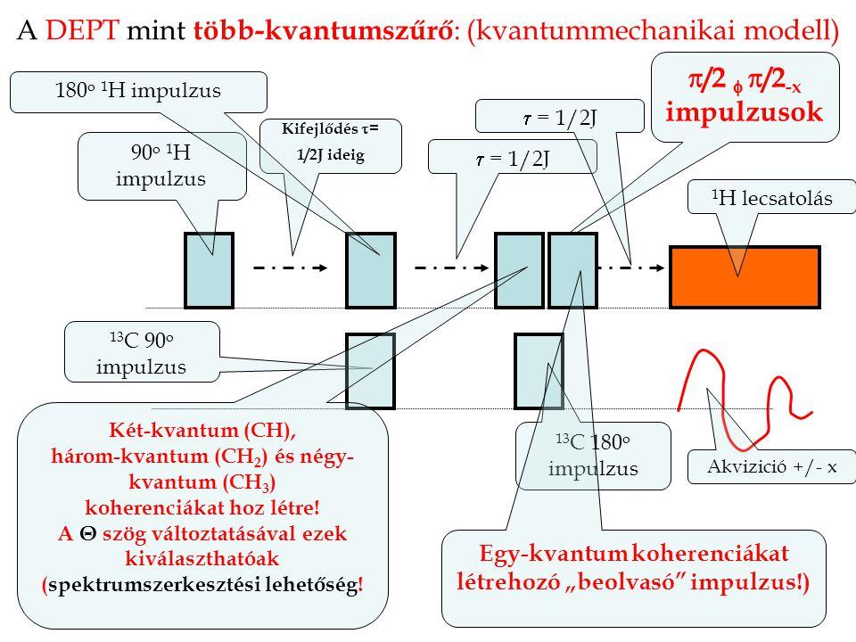 A DEPT mint több-kvantumszűrő : (kvantummechanikai modell) 13 C 90 o impulzus 90 o 1 H impulzus 1 H lecsatolás Kifejlődés  = 1/2J ideig  = 1/2J  /2   /2 -x impulzusok 13 C 180 o impulzus  = 1/2J 180 o 1 H impulzus Akvizició +/- x Két-kvantum (CH), három-kvantum (CH 2 ) és négy- kvantum (CH 3 ) koherenciákat hoz létre.