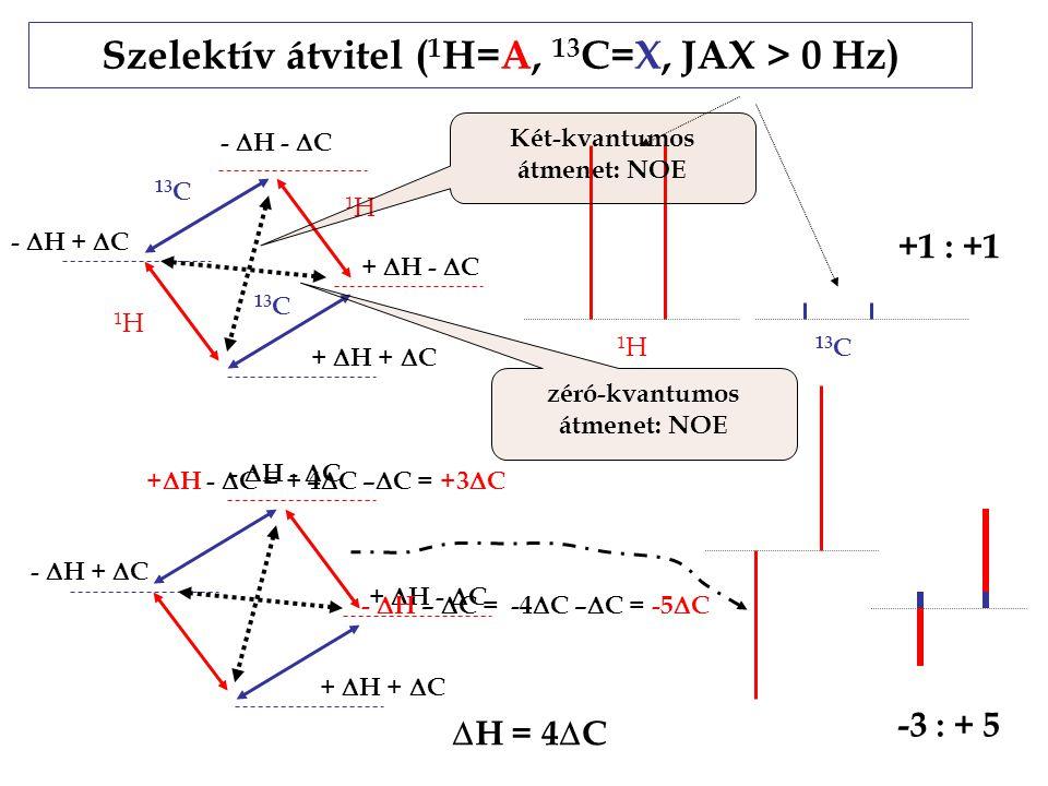 Szelektív átvitel ( 1 H=A, 13 C=X, JAX > 0 Hz) +  H +  C -  H -  C -  H +  C +  H -  C +  H +  C -  H -  C -  H +  C +  H -  C -  H –  C = -4  C –  C = -5  C +  H -  C = + 4  C –  C = +3  C +1 : +1 -3 : + 5  H = 4  C 1H1H 1H1H 13 C 1H1H Két-kvantumos átmenet: NOE zéró-kvantumos átmenet: NOE