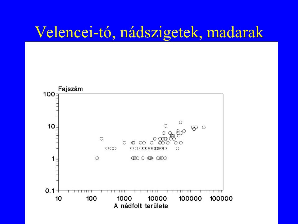 Fajösszetétel Első kérdés, mint mindig mintázatoknál: RANDOM vagy NEM RANDOM a fajösszetétel.