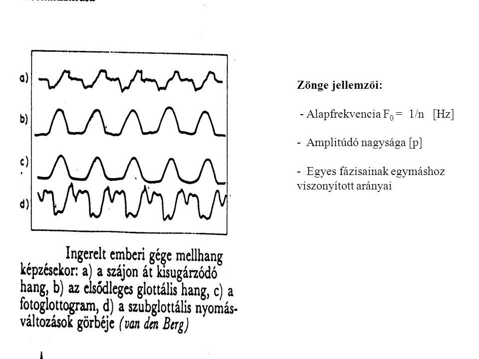 Zönge jellemzői: - Alapfrekvencia F 0 = 1/n [Hz] - Amplitúdó nagysága [p] - Egyes fázisainak egymáshoz viszonyított arányai