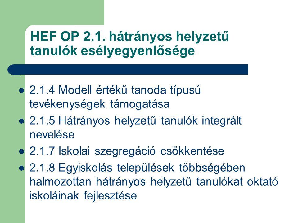 HEF OP 2.1.