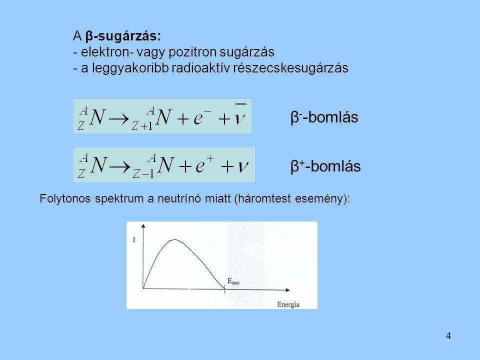 4 A β-sugárzás: - elektron- vagy pozitron sugárzás - a leggyakoribb radioaktív részecskesugárzás β - -bomlás β + -bomlás Folytonos spektrum a neutrínó