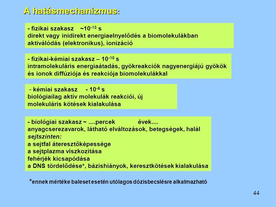 44 - fizikai szakasz ~10 -13 s direkt vagy inidirekt energiaelnyelődés a biomolekulákban aktiválódás (elektronikus), ionizáció - fizikai-kémiai szakas