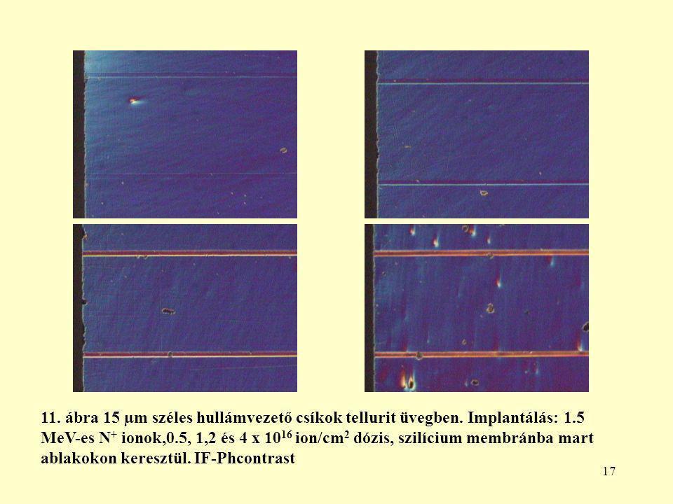 17 11. ábra 15 µm széles hullámvezető csíkok tellurit üvegben.