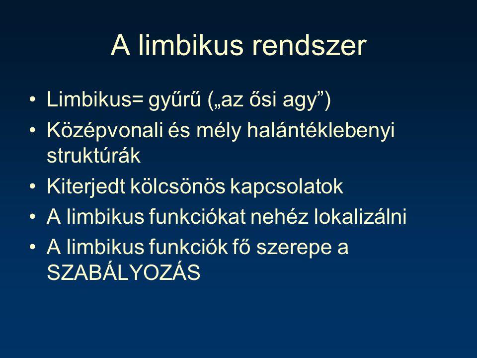 """A limbikus rendszer Limbikus= gyűrű (""""az ősi agy ) Középvonali és mély halántéklebenyi struktúrák Kiterjedt kölcsönös kapcsolatok A limbikus funkciókat nehéz lokalizálni A limbikus funkciók fő szerepe a SZABÁLYOZÁS"""