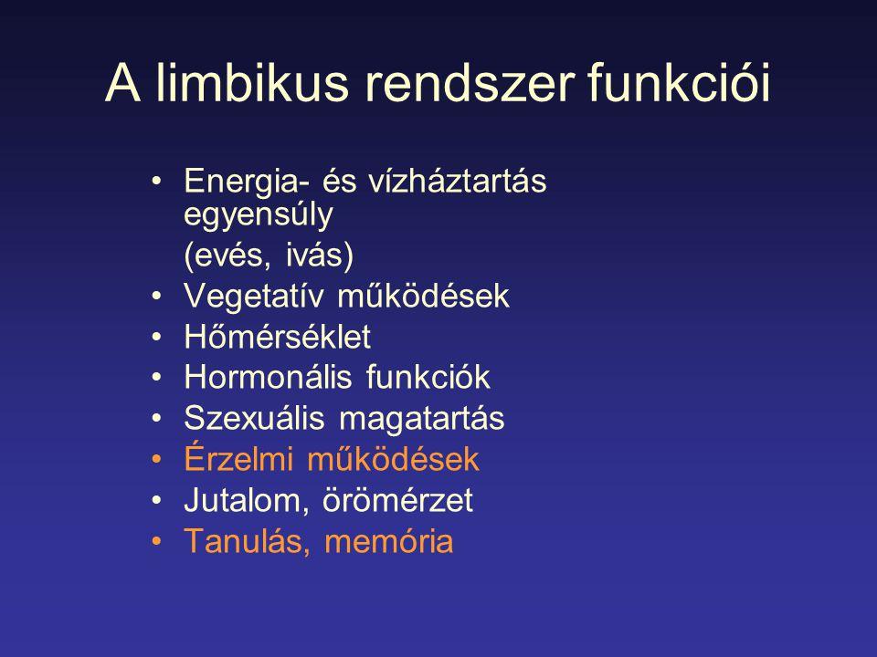 A limbikus rendszer funkciói Energia- és vízháztartás egyensúly (evés, ivás) Vegetatív működések Hőmérséklet Hormonális funkciók Szexuális magatartás Érzelmi működések Jutalom, örömérzet Tanulás, memória