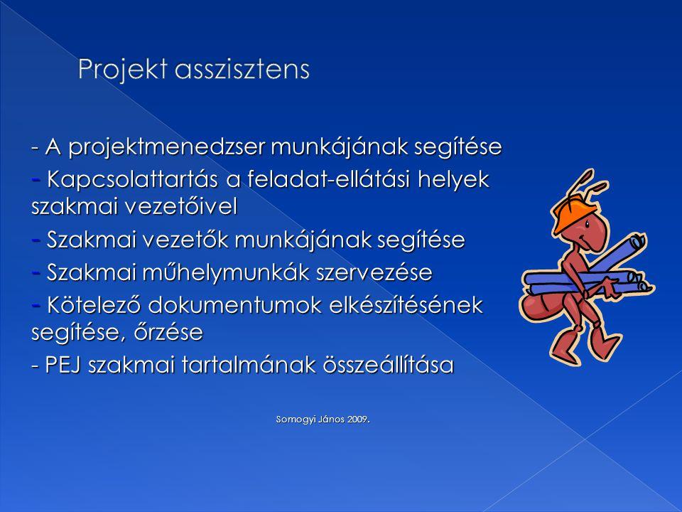 - A projektmenedzser munkájának segítése - Kapcsolattartás a feladat-ellátási helyek szakmai vezetőivel - Szakmai vezetők munkájának segítése - Szakma
