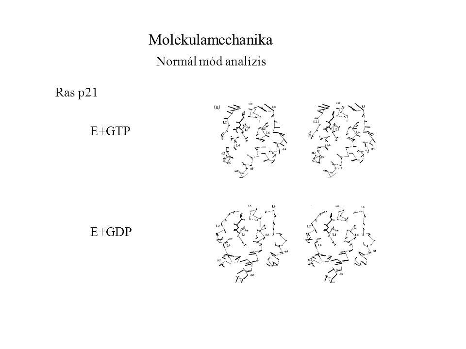 Molekulamechanika Normál mód analízis Ras p21 E+GTP E+GDP