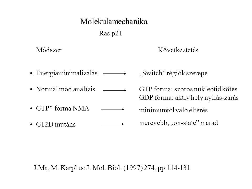 """Molekulamechanika Ras p21 Energiaminimalizálás Normál mód analízis GTP* forma NMA G12D mutáns KövetkeztetésMódszer """"Switch régiók szerepe GTP forma: szoros nukleotid kötés GDP forma: aktív hely nyílás-zárás minimumtól való eltérés merevebb, """"on-state marad J.Ma, M."""