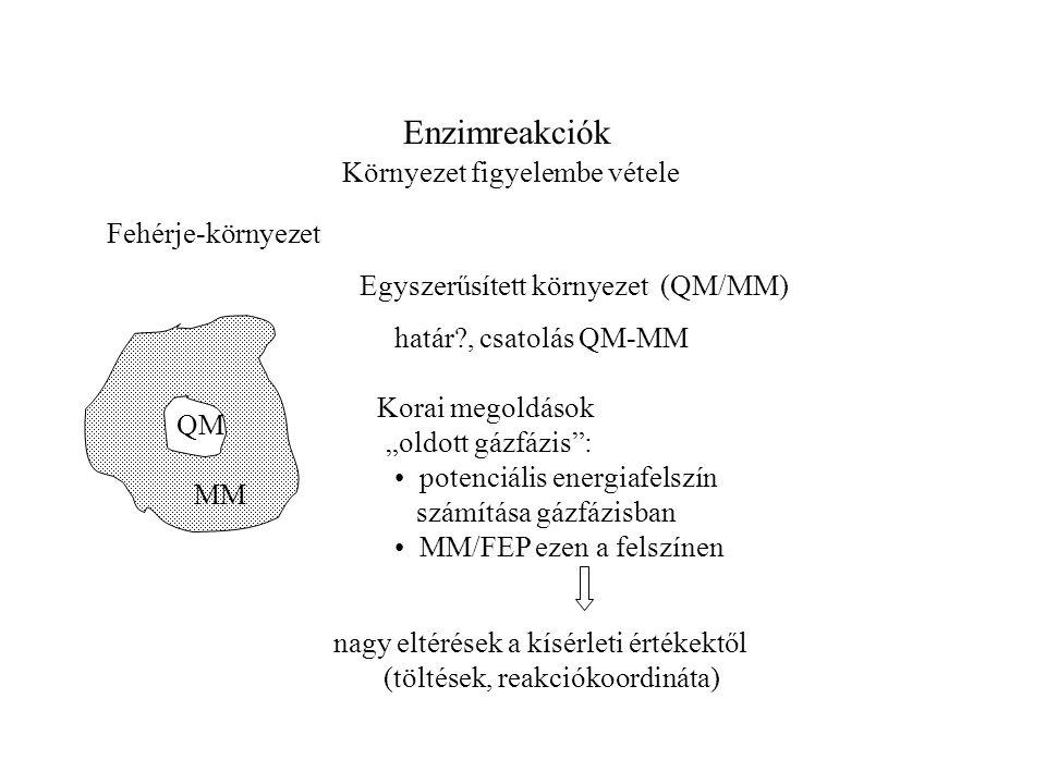 """Enzimreakciók Környezet figyelembe vétele Fehérje-környezet Egyszerűsített környezet (QM/MM) Korai megoldások potenciális energiafelszín számítása gázfázisban MM/FEP ezen a felszínen """"oldott gázfázis : nagy eltérések a kísérleti értékektől (töltések, reakciókoordináta) határ , csatolás QM-MM QM MM"""