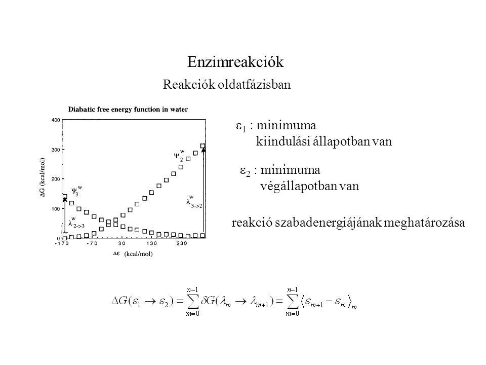 Enzimreakciók Reakciók oldatfázisban  1 : minimuma kiindulási állapotban van  2 : minimuma végállapotban van reakció szabadenergiájának meghatározás