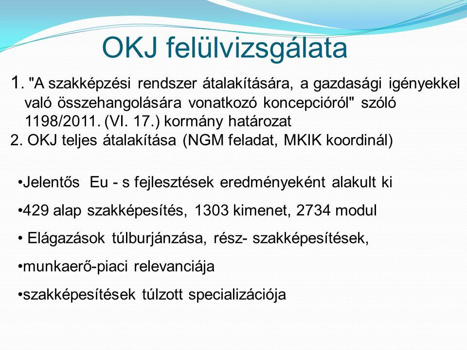 OKJ felülvizsgálata Jelentős Eu - s fejlesztések eredményeként alakult ki 429 alap szakképesítés, 1303 kimenet, 2734 modul Elágazások túlburjánzása, r