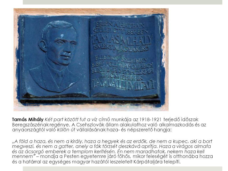 Tamás Mihály Két part között fut a víz című munkája az 1918-1921 terjedő időszak Beregszászénak regénye. A Csehszlovák állam alakulathoz való alkalmaz