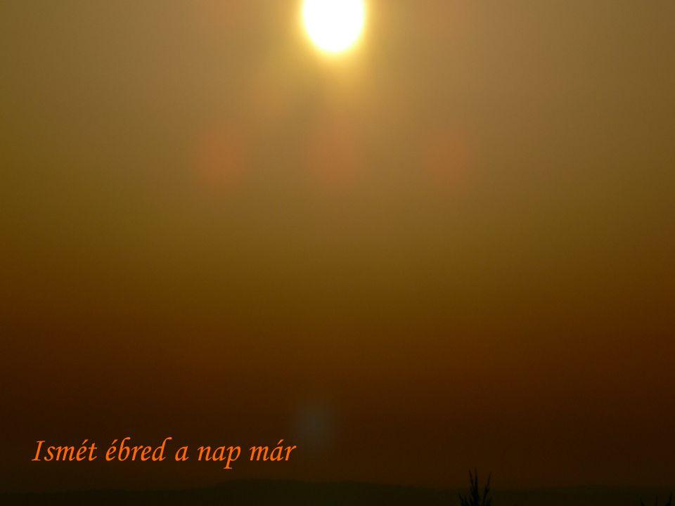 Dombra vetül ma a hajnal