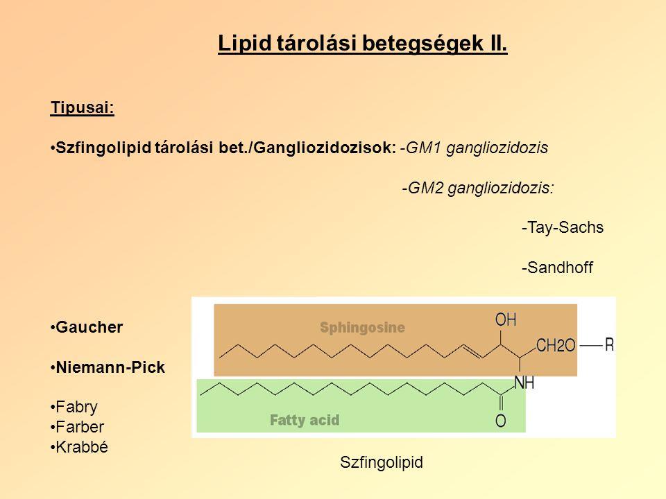 Lipid tárolási betegségek II.