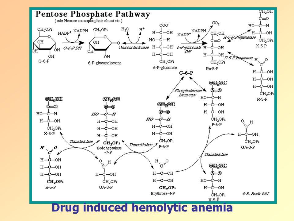 Drug induced hemolytic anemia